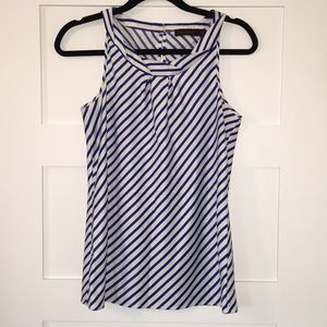 The Limited blue and white striped top.